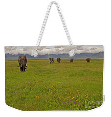 Nrongoro Crater-signed-#0141 Weekender Tote Bag