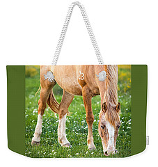 Weekender Tote Bag featuring the photograph Number 403 by Melinda Ledsome