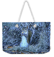 Weekender Tote Bag featuring the photograph Nuts Anyone by Deborah Benoit
