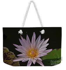 Nymphaea Pubescens Weekender Tote Bag