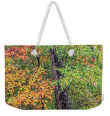 Oak Hickory Woodland Weekender Tote Bag by Tim Fitzharris