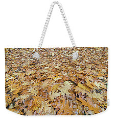 Oak Leaves On The Ground In Autumn Weekender Tote Bag by Jit Lim