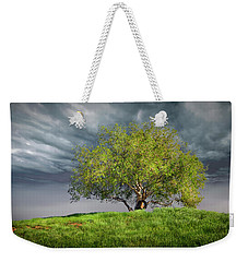 Oak Tree With Tire Swing Weekender Tote Bag by Endre Balogh