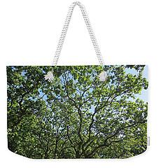 Oaks In The Noordhollandse Duinreservaat Weekender Tote Bag