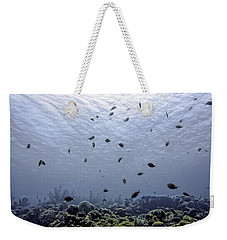 Weekender Tote Bag featuring the photograph Ocean Light by Perla Copernik