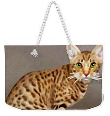 Ocicat Weekender Tote Bag by Marian Cates