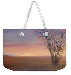 Ocotillo Weekender Tote Bag by Irene Corey