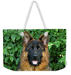 Weekender Tote Bag featuring the photograph Oden by Sandy Keeton