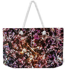 42-offspring While I Was On The Path To Perfection 42 Weekender Tote Bag