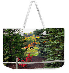 Weekender Tote Bag featuring the photograph Ohio Farm In Autumn by Joan  Minchak