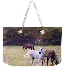 Ok Horse Ranch_1c Weekender Tote Bag