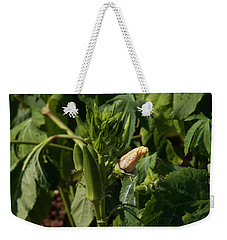 Weekender Tote Bag featuring the photograph Okra On The Stalk by Chris Flees