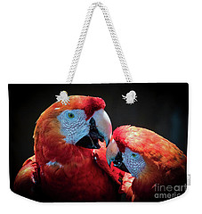 Weekender Tote Bag featuring the photograph Old Companions by Mitch Shindelbower