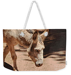 Weekender Tote Bag featuring the photograph Old Donkey by Debby Pueschel
