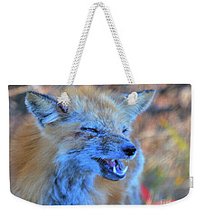 Weekender Tote Bag featuring the photograph Old Fox by Debbie Stahre