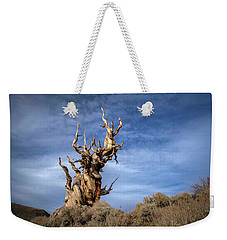 Weekender Tote Bag featuring the photograph Old Friend by Sean Foster