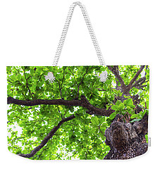 Weekender Tote Bag featuring the photograph Old Green Tree by Jingjits Photography