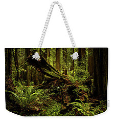Old Growth Forest Weekender Tote Bag