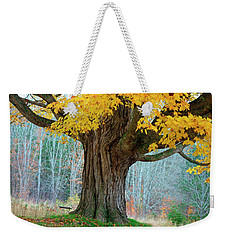Old Maple Tree And Swing In Autumn Color Weekender Tote Bag