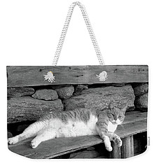 Weekender Tote Bag featuring the photograph Old Mill Cat by Sandi OReilly