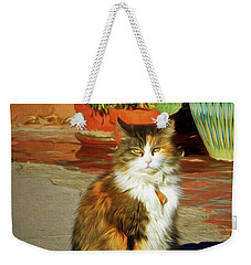 Weekender Tote Bag featuring the photograph Old Town Cat by Nikolyn McDonald