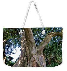 Old Tree Weekender Tote Bag