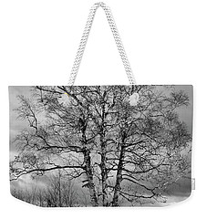 Old White Birch Weekender Tote Bag