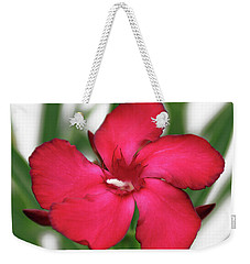 Oleander Blood-red Velvet 1 Weekender Tote Bag by Wilhelm Hufnagl