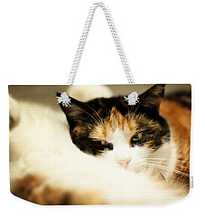 Weekender Tote Bag featuring the photograph On A Furry Pillow by Laura Melis