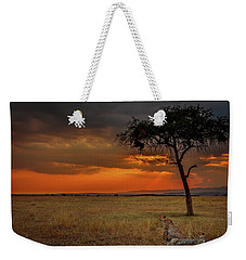 On A  Serengeti Evening  Weekender Tote Bag