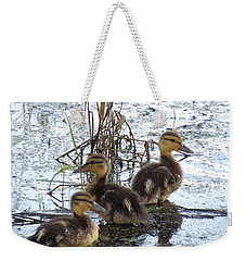 Weekender Tote Bag featuring the photograph On Adventurte by I'ina Van Lawick