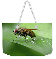 On The Fly... Weekender Tote Bag by Mariarosa Rockefeller
