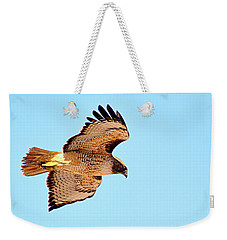 Weekender Tote Bag featuring the photograph On The Hunt by AJ Schibig