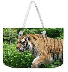 Weekender Tote Bag featuring the photograph On The Prowl by Richard Bryce and Family