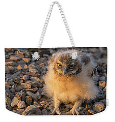 On The Prowl Weekender Tote Bag by Sue Cullumber
