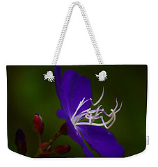 On The Side Weekender Tote Bag by Warren Thompson