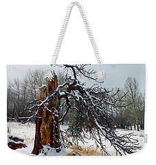 Weekender Tote Bag featuring the photograph One Branch Left by Shane Bechler