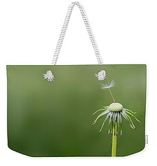 Weekender Tote Bag featuring the photograph One Dandy by Bess Hamiti