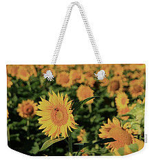 Weekender Tote Bag featuring the photograph One In A Million Sunflowers by Chris Berry