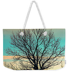 Weekender Tote Bag featuring the photograph One by Nina Stavlund