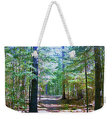 Weekender Tote Bag featuring the photograph One Path by Shirley Moravec