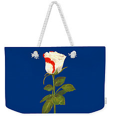 Weekender Tote Bag featuring the pastel One Rose by Anastasiya Malakhova