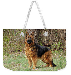 Weekender Tote Bag featuring the photograph Onja by Sandy Keeton