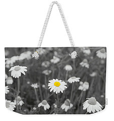 Weekender Tote Bag featuring the photograph Oopsy Daisy by Benanne Stiens