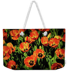 Open Wide - Tulips On Display Weekender Tote Bag