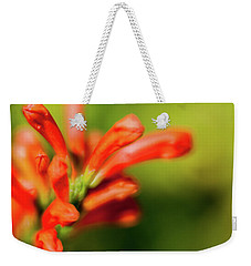 Orange And Green Weekender Tote Bag