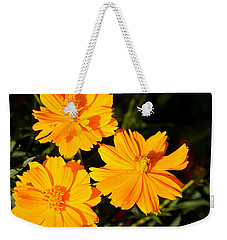 Weekender Tote Bag featuring the photograph Cosmos Trio by Sheila Brown
