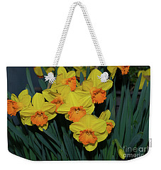Orange-centered Daffodils Weekender Tote Bag