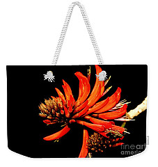 Weekender Tote Bag featuring the photograph Orange Clover II by Stephen Mitchell