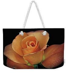 Orange Cream Weekender Tote Bag by Elaine Malott